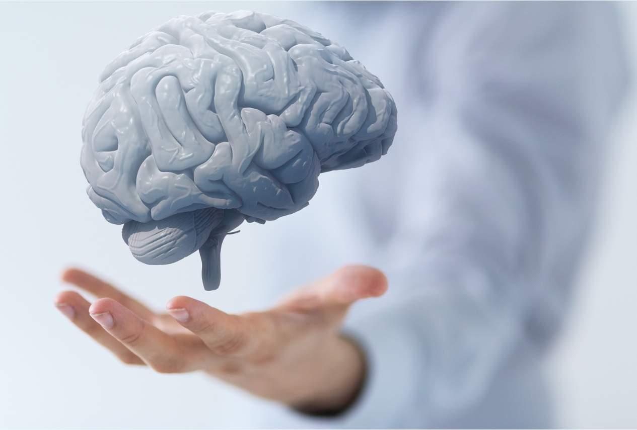 Baik Untuk Kesehatan Otak