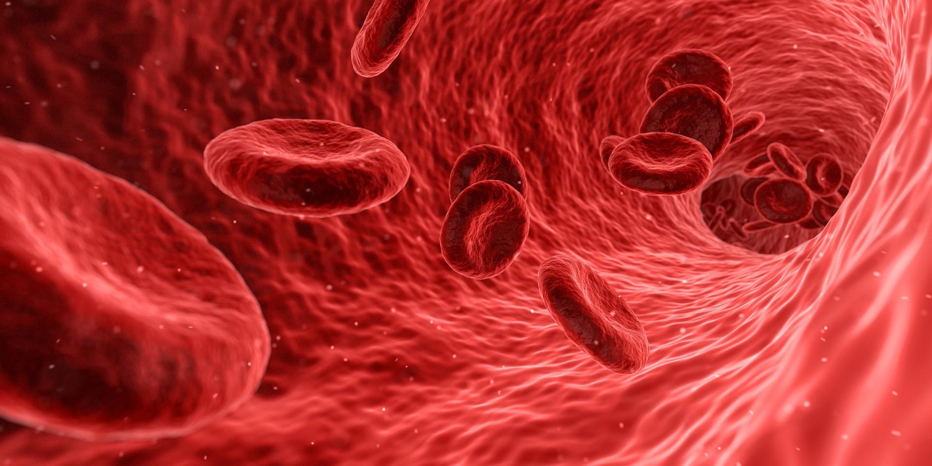 Mencegah Anemia