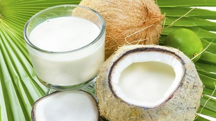 minyak kelapa hijau dan manfaatnya
